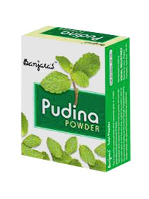 Banjaras Pudina Powder