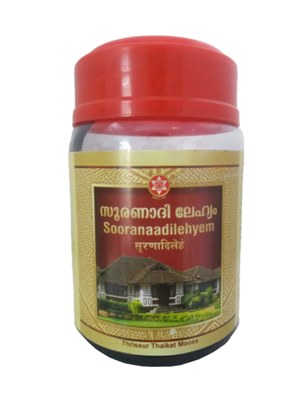 SNA Sooranaadi Leham