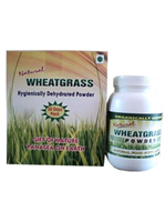 Wheatgrass Powder Sachets