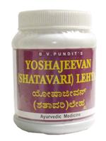 BV Pandit Yoshajeevan Lehya